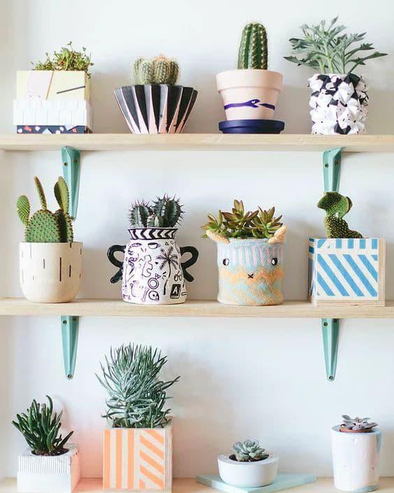 10 plantas fáceis de cuidar para apartamento 1
